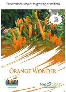 Orange Wonder Pepper, Sae Garden