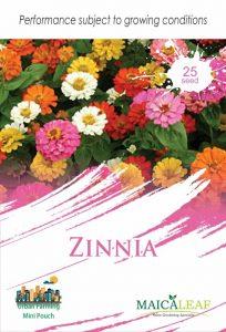 Bunga Zinnia Mix Color, Sae Garden