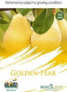 Golden Pear, Sae Garden