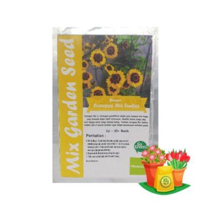 benih bunga coreopsis mix mgs