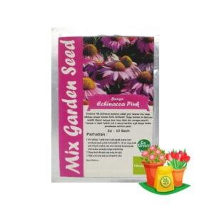 benih bunga echinacea pink mgs
