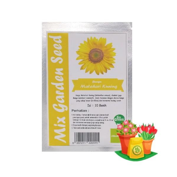 benih bunga matahari kuning mgs