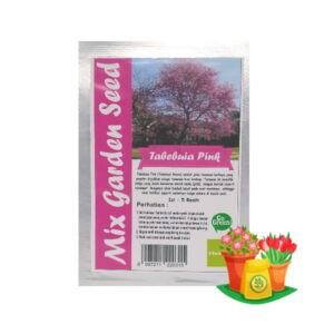 benih bunga tabebuia pink mgs