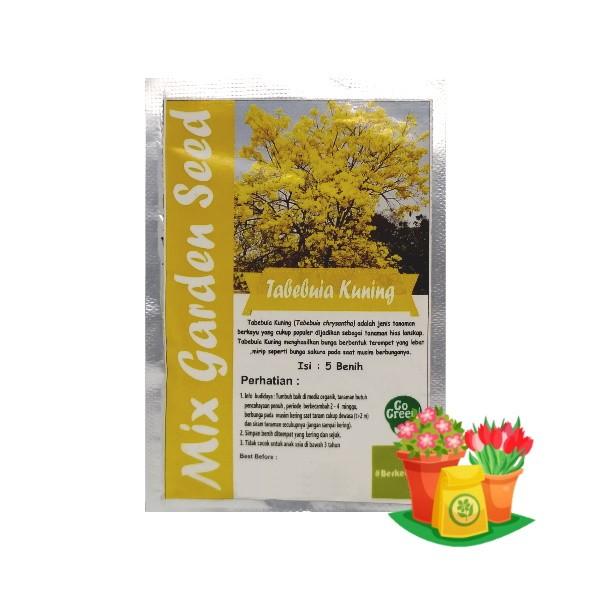 benih bunga tabebuya kuning mgs