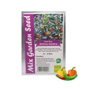 benih cabe bolivian rainbow mgs