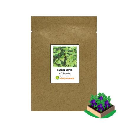 benih daun mint rp