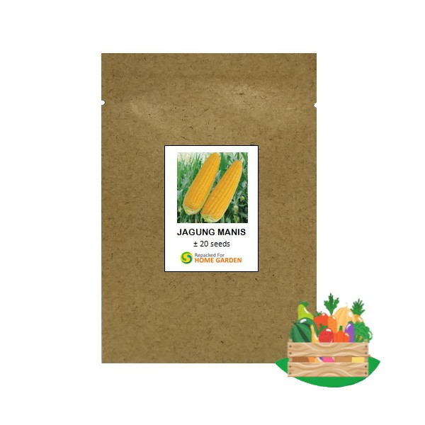 benih jagung manis rpk