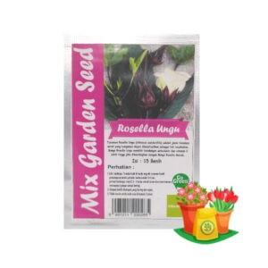 Benih Rosella Ungu Mgs 300x300, Sae Garden