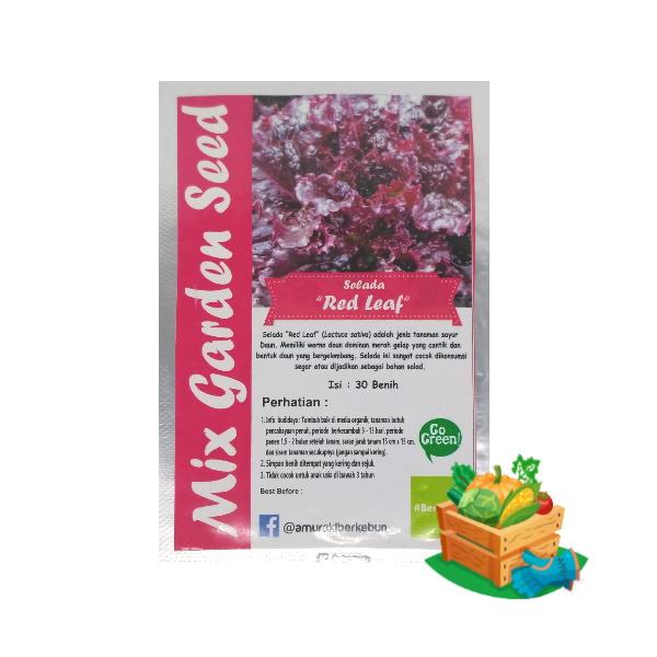 benih selada red leaf mgs