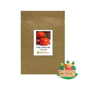 Benih Tomat Marglobe Rp 300x300, Sae Garden