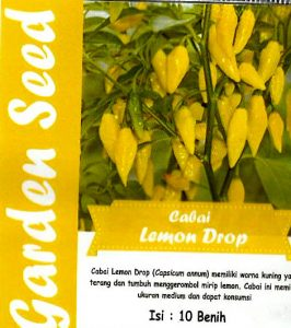 Cabe lemon drop, Sae Garden