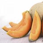 Manfaat Melon Bagi Kesehatan