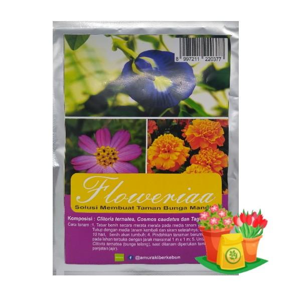 paket benih bunga clitoria
