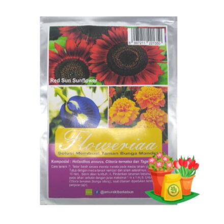 paket benih bunga redsun